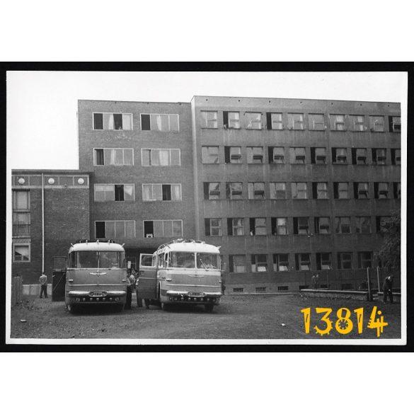Korai Ikarus 55-ös buszok, autóbusz, jármű, közlekedés, 1950-es évek, eredeti fotó, papírkép. méret megközelítőleg (centiméterben): 6 x 9  Használt! Eredeti nagyítás!