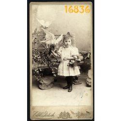 Elbl és Pietsch műterem, kislány kosárral és galambokkal, Budapest, 1894, Eredeti nagyméretű kabinet fotó.