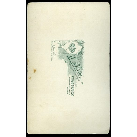 Kozics Ede műterem, elegáns hölgy, portré, Pozsony (Bratislava), 1903, Eredeti nagyméretű kabinet fotó.