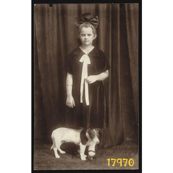 Grünbaum műterem, Beregszász, Nagyszőlős (V. Sevljus), kislány kutyával, masnival, 1910-es évek, Eredeti fotó, papírkép.