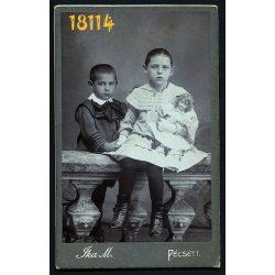 Ika műterem, Pécs, gyerekek babával, játék, matróz blúz, testvér, 1900-as évek, Eredeti CDV, vizitkártya fotó.
