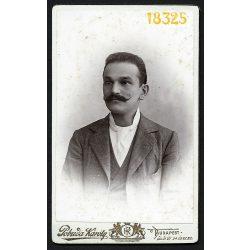 Pobuda műterem, elegáns úr bajusszal, nyakkendő, férfi portré, Budapest, 1890-es évek, Eredeti CDV, vizitkártya fotó.