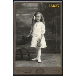 Schmidt műterem, Budapest, elegáns kislány gyönyörű hajjal, nyaklánc, virág, gyerek, 1880-as évek, Eredeti kabinet fotó.