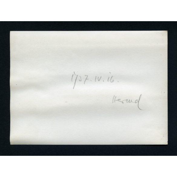 Herendi Porcelángyár R.T., munka, munkás, kézműves, iparművész, 1937, 1930-as évek, Eredeti fotó, papírkép.