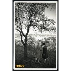 Budapest látképe a Gellért-hegyről, Duna, tavasz, 1920-as évek, Eredeti képeslap fotó, papírkép.