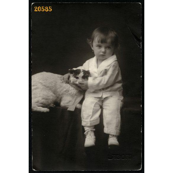 Labori műterem, kislány macskával, Budapest, 1920-as évek, Eredeti fotó, papírkép.