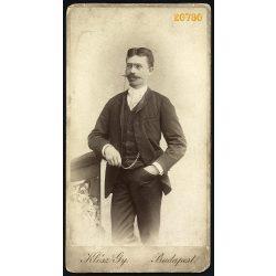 Klösz műterem, elegáns úr bajusszal, óralánccal, lornyettel, Budapest, portré, 1880-as évek, Eredeti nagyobb méretű kabinet fotó.