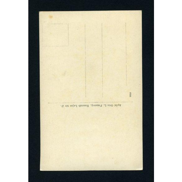 Apfel műterem, Pozsony, Felvidék, férfi egyenruhában, bajusszal, 1900-as évek, Eredeti fotó, papírkép.