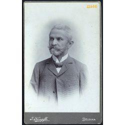 Kempfle műterem, Belovár, Délvidék,  elegáns szakállas úr portréja, 1870-es (?) évek, Eredeti kabinet fotó.