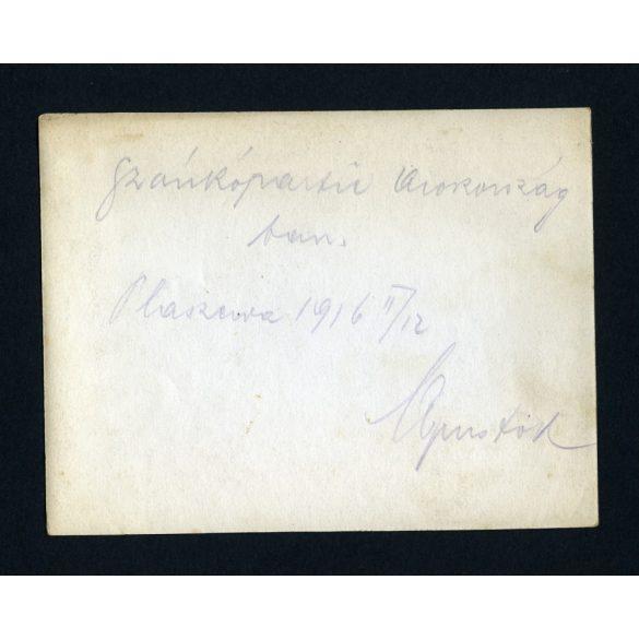 Magyar katonák, tisztek lovasszánon, 1. világháború, Oroszország, egyenruha, 1916, 1910-es évek, Eredeti fotó, papírkép.