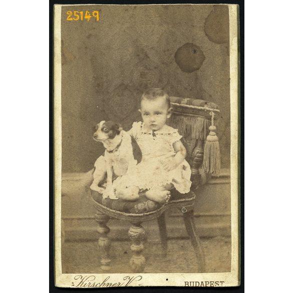 Kirschner műterem, Budapest, kislány kutyájával, 1880-as évek, Eredeti CDV, vizitkártya fotó, alul-felül vágott.