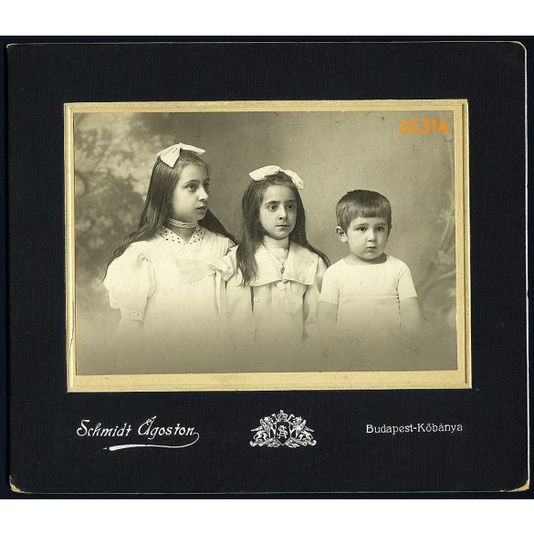 Schmidt műterem, Budapest-Kőbánya, testvérek, lányok és kisfiú portréja, 1900-as évek, Eredeti nagyméretű kartonra kasírozott papírkép.